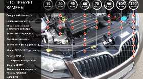 Техническое обслуживание Skoda Octavia (Шкода Октавия) в Москве | Цена в автосервисе Skoda